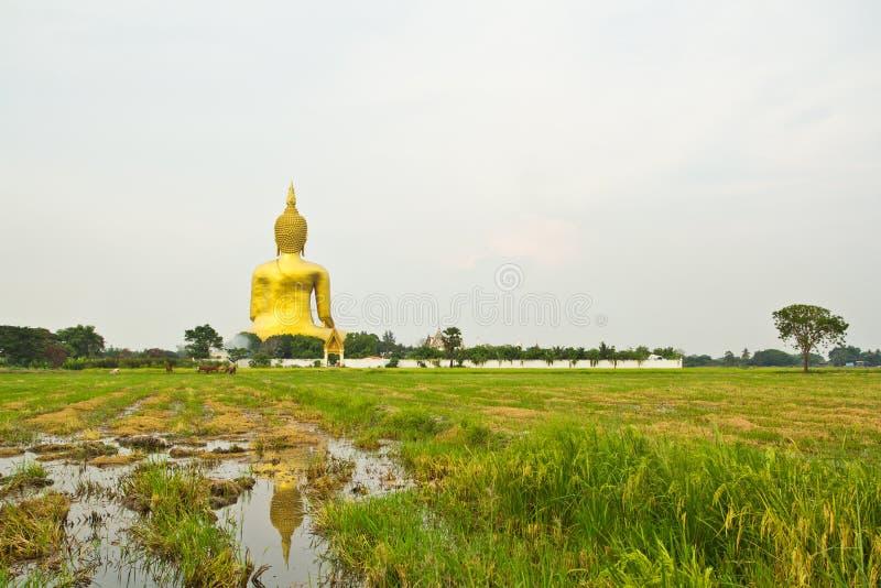 Ο μεγάλος Βούδας σε Wat Mung, Ταϊλάνδη στοκ εικόνα με δικαίωμα ελεύθερης χρήσης