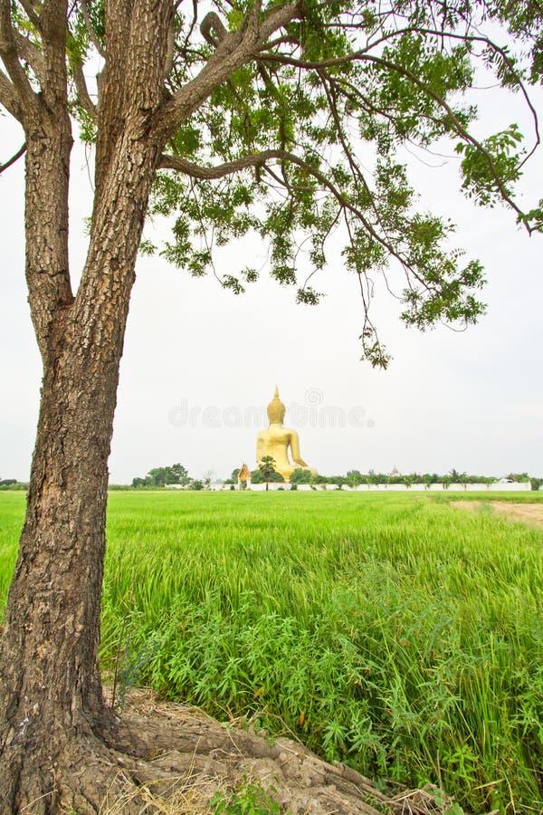 Ο μεγάλος Βούδας σε Wat Mung, Ταϊλάνδη στοκ εικόνα
