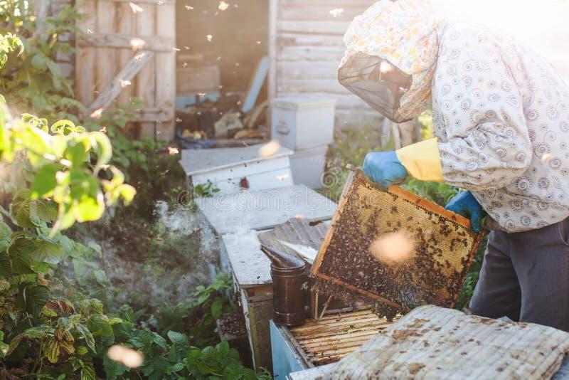 Ο μελισσοκόμος εργάζεται με τις μέλισσες και τις κυψέλες στο μελισσουργείο στοκ φωτογραφίες