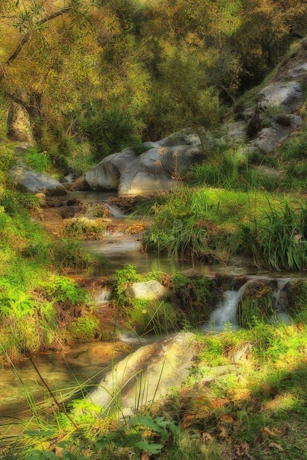 Ο μικρός ποταμός διασχίζει το φθινοπωρινό περιβάλλον στοκ φωτογραφία