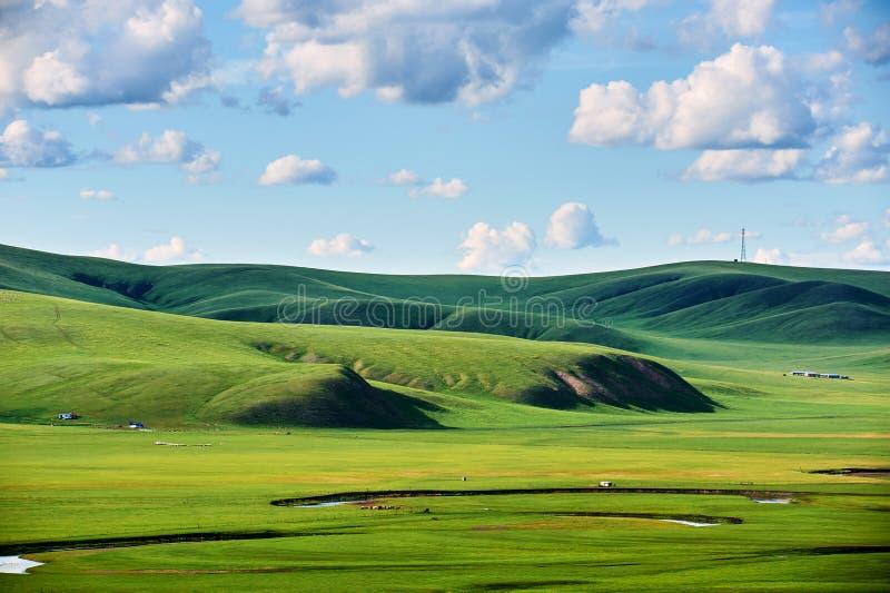 Ο μπλε ουρανός και τα σύννεφα στην ανατολή θερινών λιβαδιών στοκ εικόνες με δικαίωμα ελεύθερης χρήσης