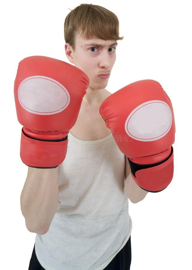 ο μπόξερ φορά γάντια κόκκιν&omicron στοκ φωτογραφία με δικαίωμα ελεύθερης χρήσης