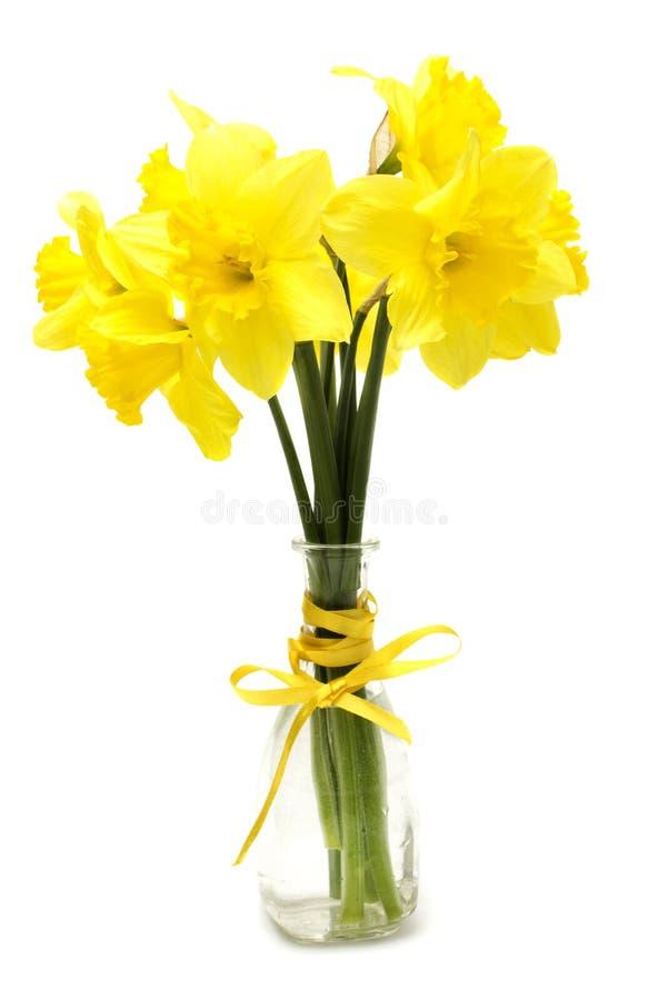 Ο νάρκισσος ανθίζει το μπουκέτο λουλουδιών στο βάζο στοκ εικόνα με δικαίωμα ελεύθερης χρήσης