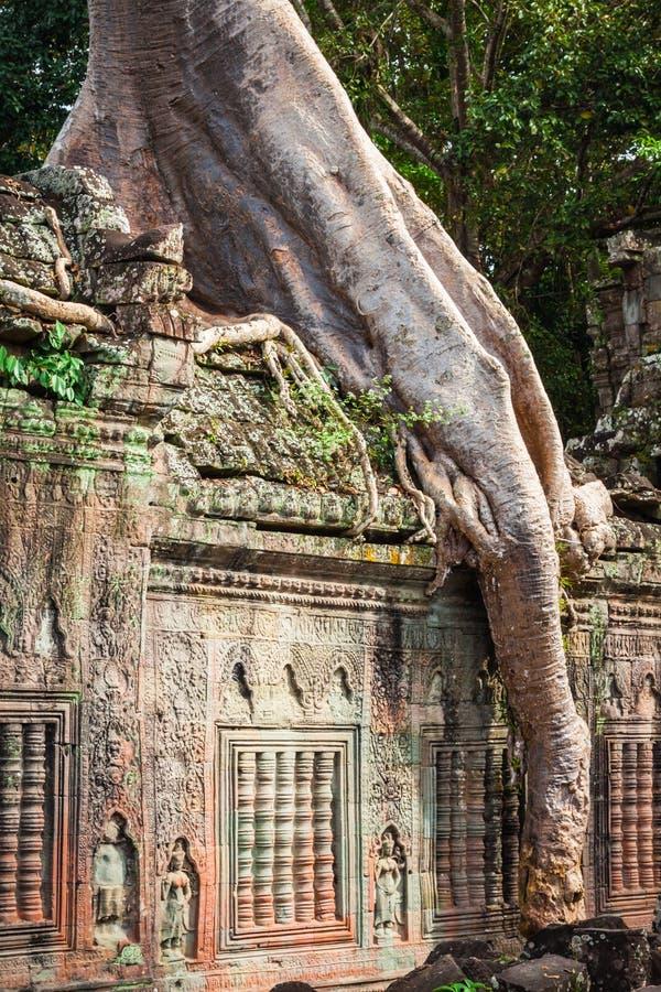 Ο ναός Khan Preah, περιοχή Angkor, Siem συγκεντρώνει, Καμπότζη στοκ φωτογραφίες
