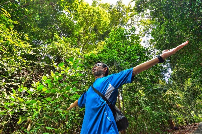 Ο νεαρός άνδρας οπλίζει αυξημένος απολαμβάνοντας το καθαρό αέρα στο πράσινο δάσος. στοκ φωτογραφία με δικαίωμα ελεύθερης χρήσης