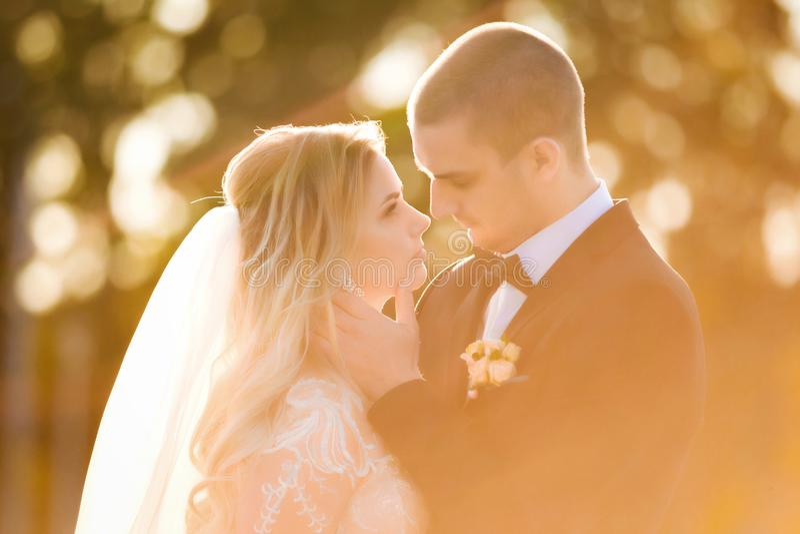 Ο νεόνυμφος αγγίζει τη νύφη ήπια σε ένα φως ήλιων στοκ φωτογραφία