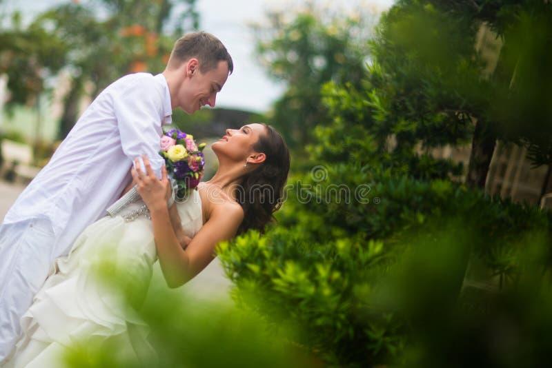 Ο νεόνυμφος αγκαλίασε τη νύφη και το έκλινε στο φιλί Αγκάλιασμα γαμήλιων ζευγών στοκ φωτογραφία με δικαίωμα ελεύθερης χρήσης