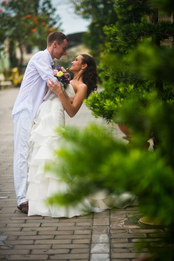 Ο νεόνυμφος αγκαλίασε τη νύφη και το έκλινε στο φιλί Γαμήλιο ζεύγος που αγκαλιάζει μεταξύ των πράσινων δέντρων στοκ εικόνες με δικαίωμα ελεύθερης χρήσης