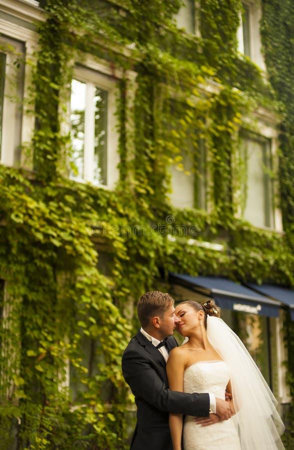 Ο νεόνυμφος πρόκειται να φιλήσει τη νύφη του απέναντι από το κτήριο με στοκ φωτογραφίες με δικαίωμα ελεύθερης χρήσης