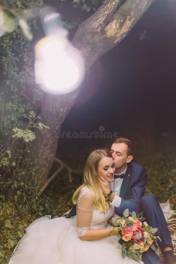 Ο νεόνυμφος φιλά τη νύφη στο μέτωπο καθμένος στη χλόη κάτω από το λαμπτήρα γιρλαντών στοκ εικόνες