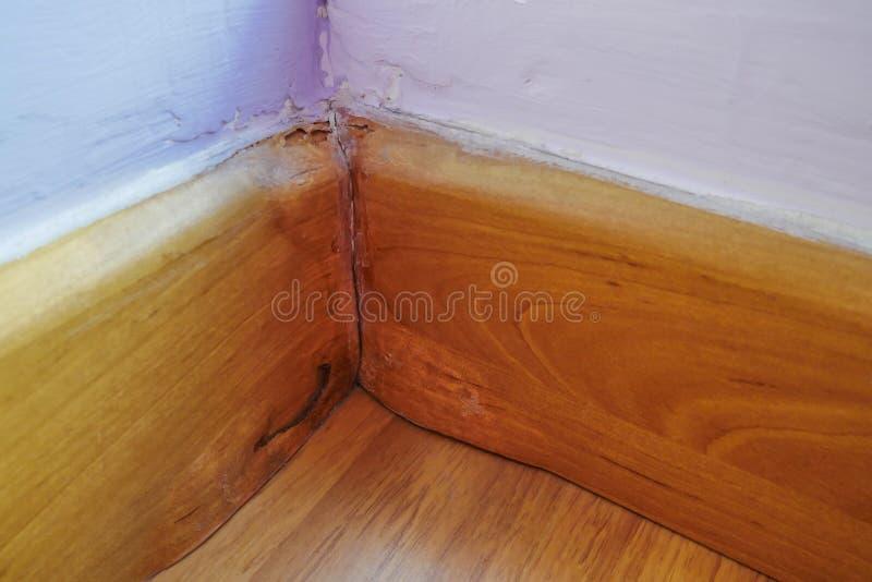 Ο ξύλινος περιζώνοντας πίνακας έγινε πρημένος λόγω του γεγονότος ζημίας νερού εμφανίζεται στοκ εικόνες με δικαίωμα ελεύθερης χρήσης