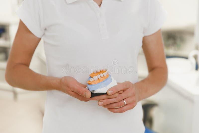 Ο οδοντίατρος σε ένα άσπρο κοστούμι κρατά στις οδοντοστοιχίες χεριών στο οδοντικό γραφείο, κινηματογράφηση σε πρώτο πλάνο στοκ φωτογραφίες