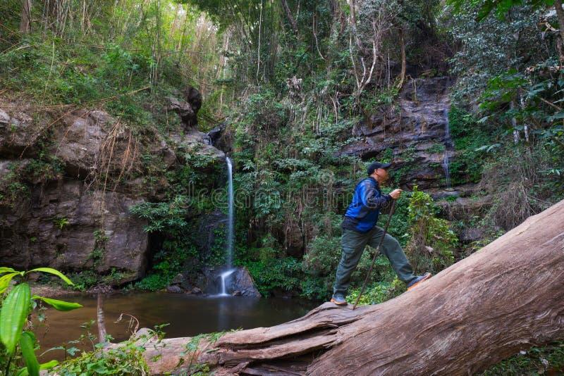 Οδοιπορία τουριστών στο τροπικό δάσος στοκ φωτογραφίες με δικαίωμα ελεύθερης χρήσης
