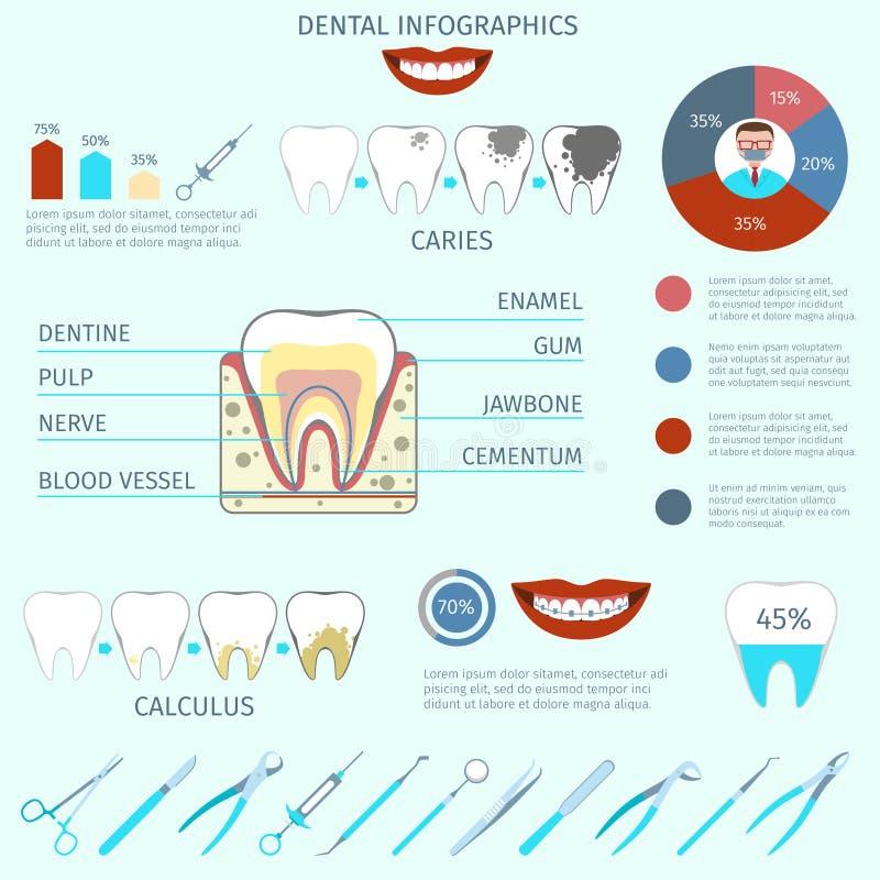 Οδοντικό σύνολο infographics διανυσματική απεικόνιση