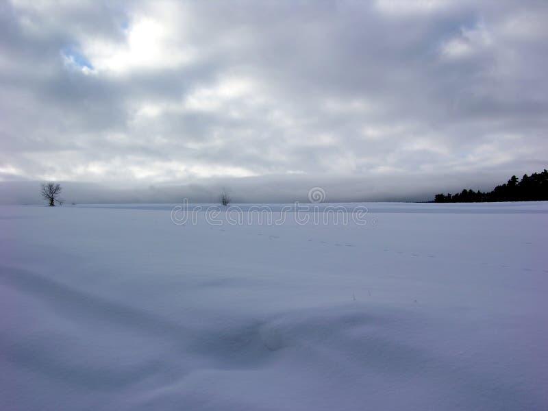 ο ουρανός πεδίων συναντά το χιόνι στοκ εικόνα