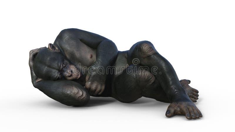 Ο πίθηκος χιμπατζών, ύπνος πίθηκων αρχιεπισκόπων, άγριο ζώο που απομον διανυσματική απεικόνιση