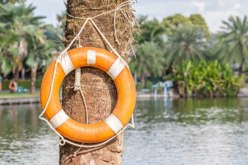 Ο πορτοκαλής σημαντήρας ζωής κρεμά στο εθνικό πράσινο πάρκο, την ασφάλεια και το s στοκ φωτογραφίες