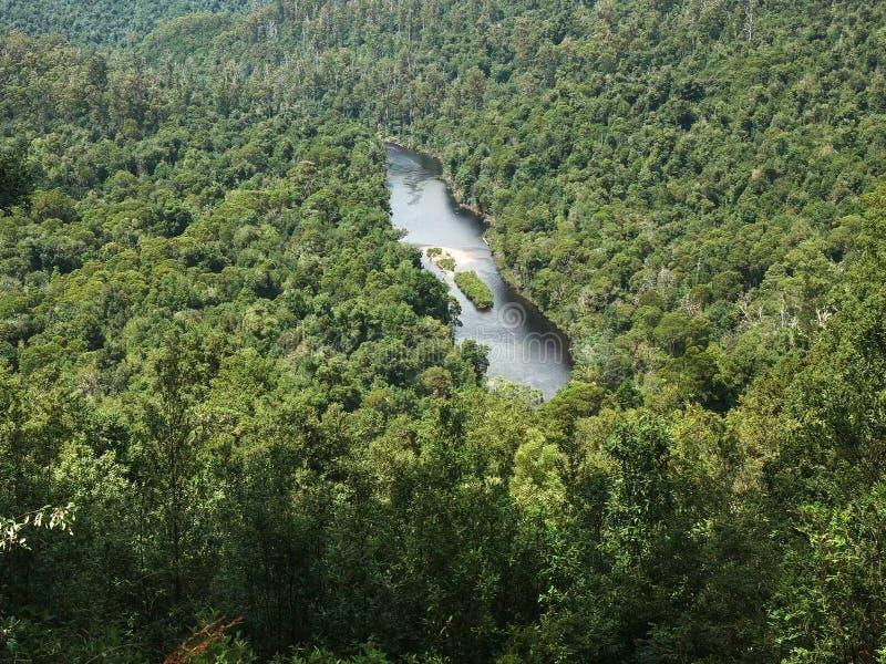Ο ποταμός αρθούρου από την επιφυλακή sumac στο δάσος tarkine του TAS στοκ εικόνα με δικαίωμα ελεύθερης χρήσης