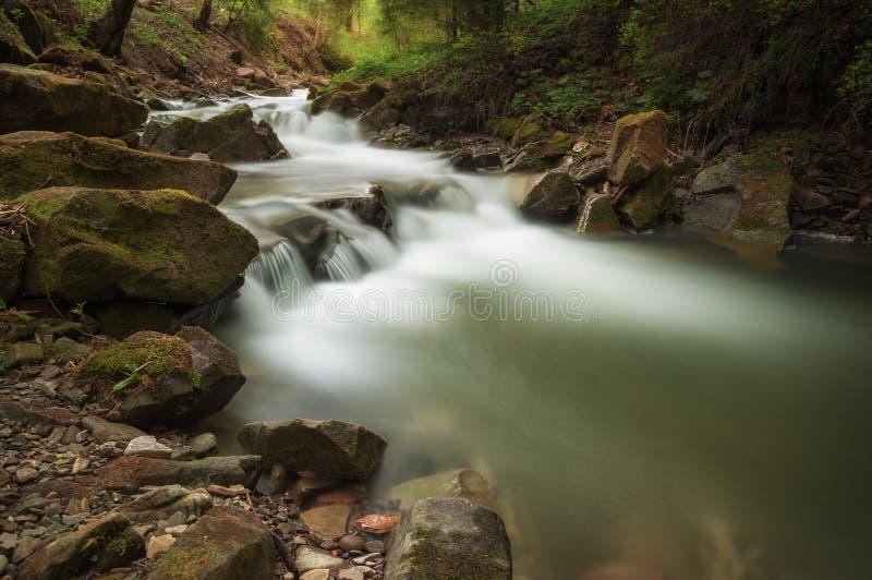 Ο ποταμός βουνών διατρέχει ενός πράσινου δάσους νεράιδων στοκ εικόνες