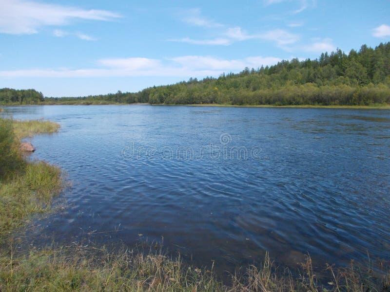Ο ποταμός είναι ήρεμος Μικροί κυματισμοί Δάσος στοκ εικόνα με δικαίωμα ελεύθερης χρήσης