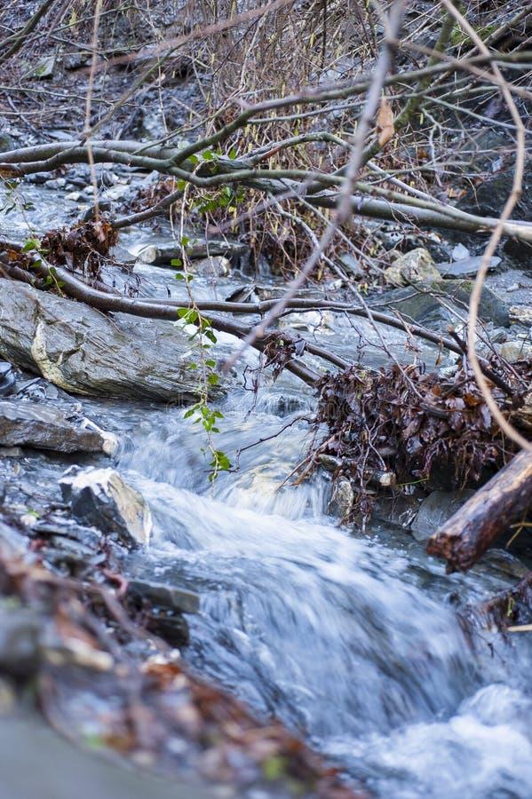 Ο ποταμός είναι μια φυσική ρέοντας κοίτη στοκ εικόνες