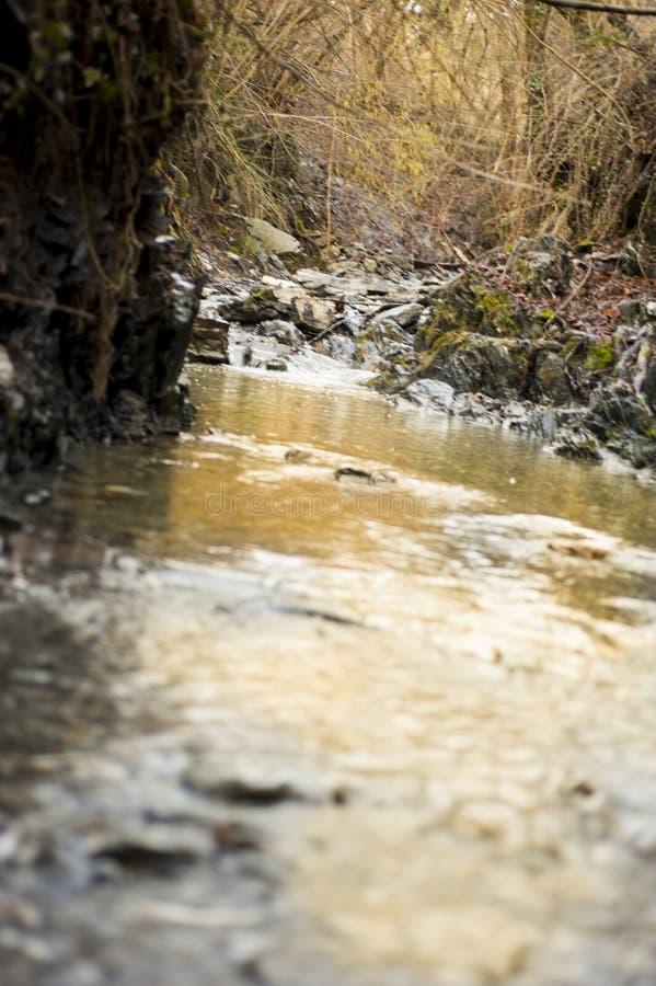 Ο ποταμός είναι μια φυσική ρέοντας κοίτη στοκ εικόνες με δικαίωμα ελεύθερης χρήσης