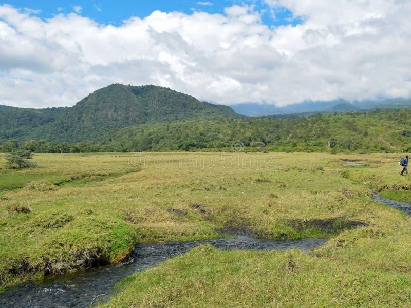 Ο ποταμός σε ένα κλίμα βουνών, τοποθετεί Meru, εθνικό πάρκο Arusha στοκ φωτογραφία