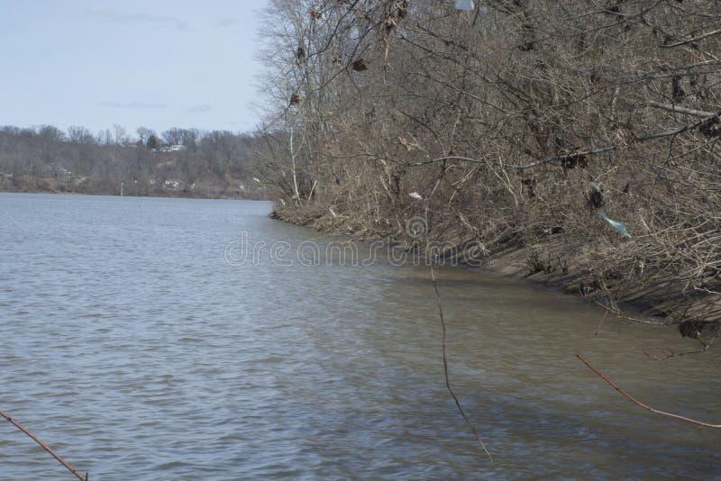 Ο ποταμός του Οχάιου που πλαισιώνεται δέντρα είναι στοκ εικόνα