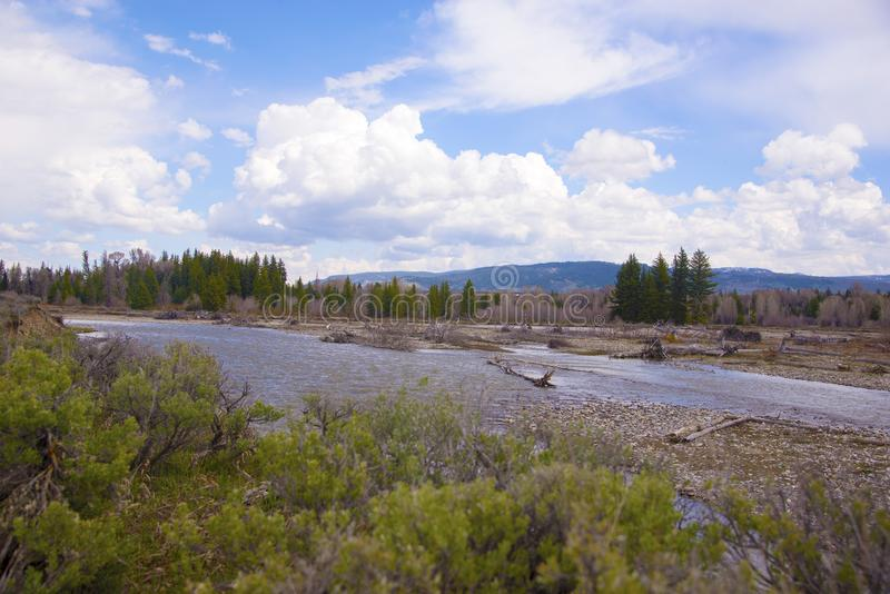 Ο ποταμός φιδιών είναι μια μεγάλη θέση για να πετάξει Fisk στα τέλη του καλοκαιριού κατά μήκος του μεγάλου εθνικού πάρκου Teton στοκ φωτογραφία