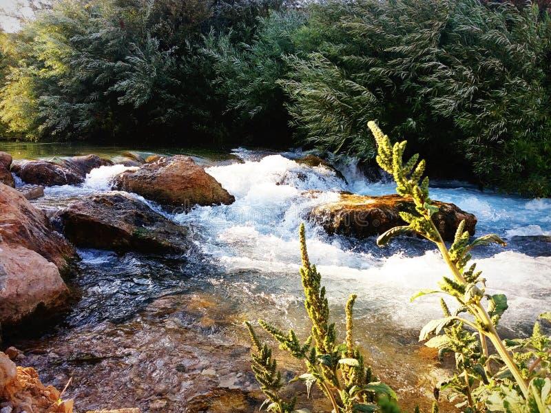 Ο ποταμός Assi στοκ φωτογραφίες