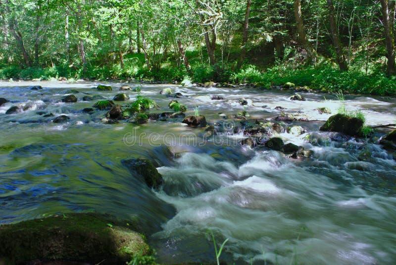 Ο ποταμός sioule auvergne στοκ εικόνες