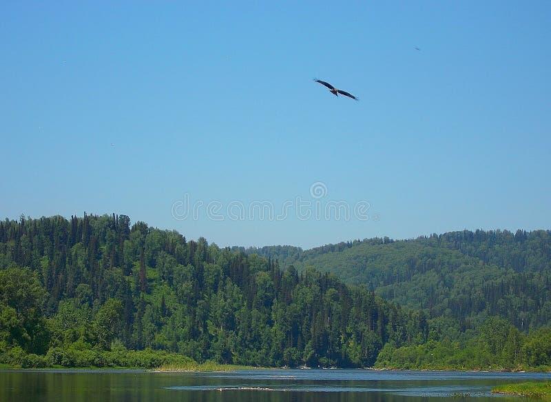 Ο ποταμός Tom στοκ φωτογραφίες με δικαίωμα ελεύθερης χρήσης