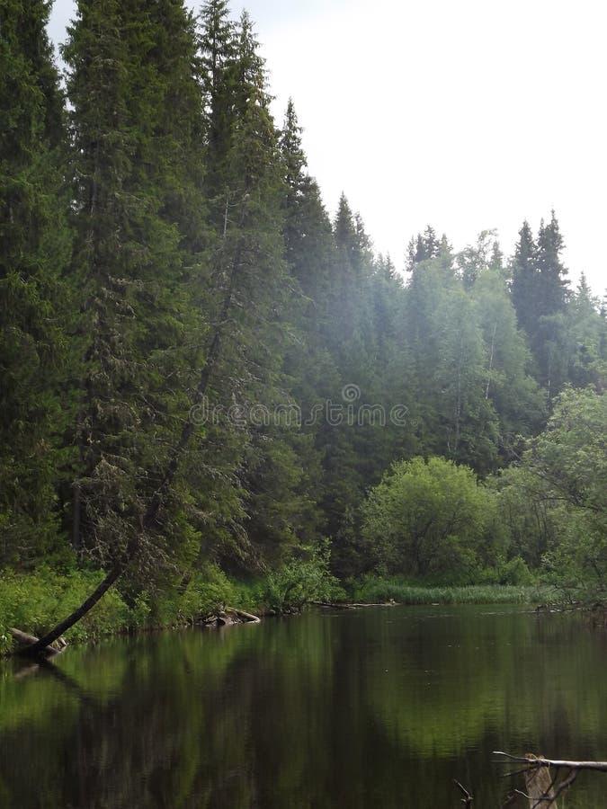 Ο ποταμός Uls στο έδαφος Perm στοκ φωτογραφία με δικαίωμα ελεύθερης χρήσης