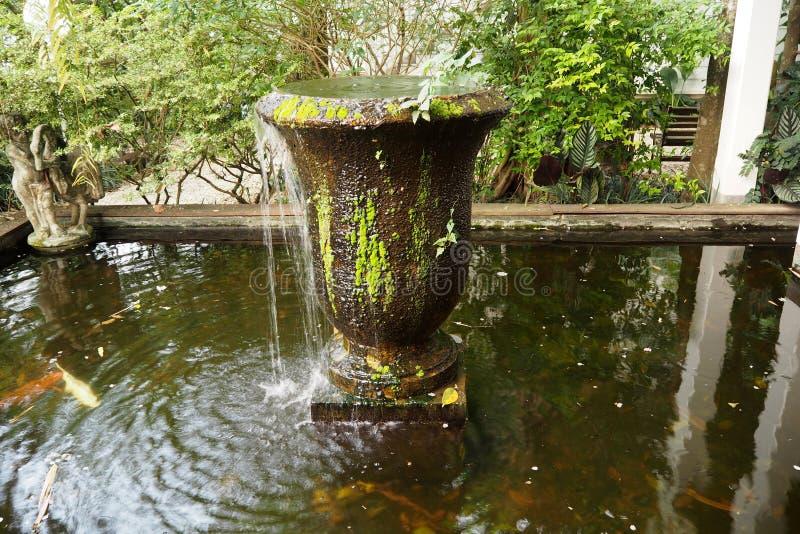 Ο πράσινος κήπος φαίνεται ειρήνη και φαίνεται συμπαθητικός στοκ φωτογραφία με δικαίωμα ελεύθερης χρήσης