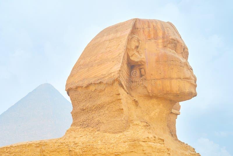Ο προϊστάμενος του Sphinx, Giza, Αίγυπτος στοκ εικόνες