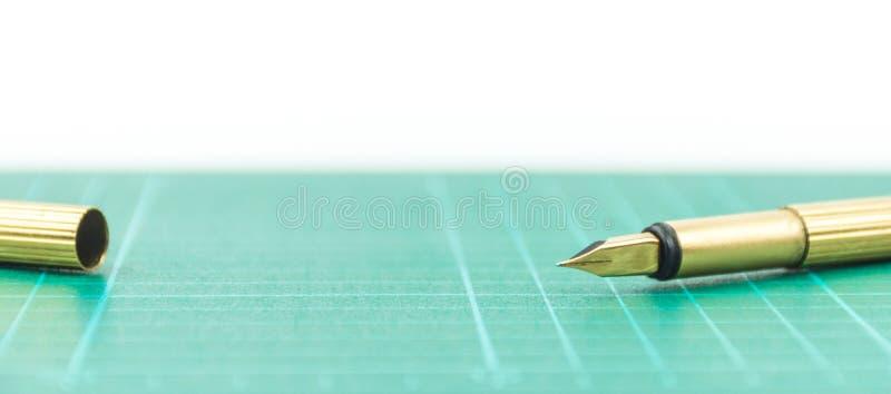 Ο πυροβολισμός μανδρών στο στούντιο στοκ εικόνα με δικαίωμα ελεύθερης χρήσης