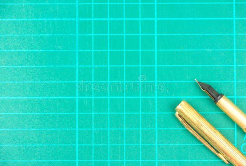 Ο πυροβολισμός μανδρών στο στούντιο στοκ φωτογραφία με δικαίωμα ελεύθερης χρήσης