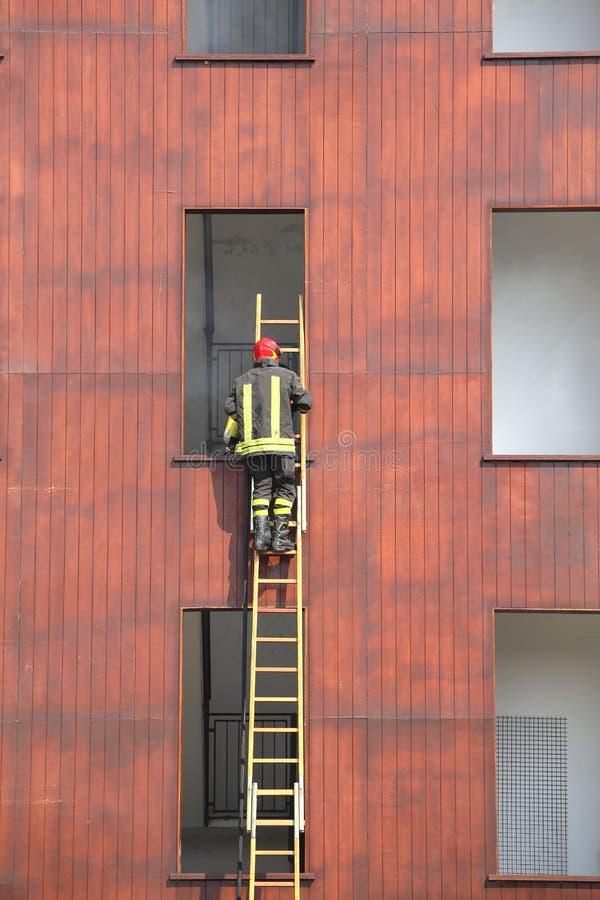 Ο πυροσβέστης αναρριχείται επάνω στη σκάλα κατά τη διάρκεια μιας κατάρτισης στοκ φωτογραφίες με δικαίωμα ελεύθερης χρήσης