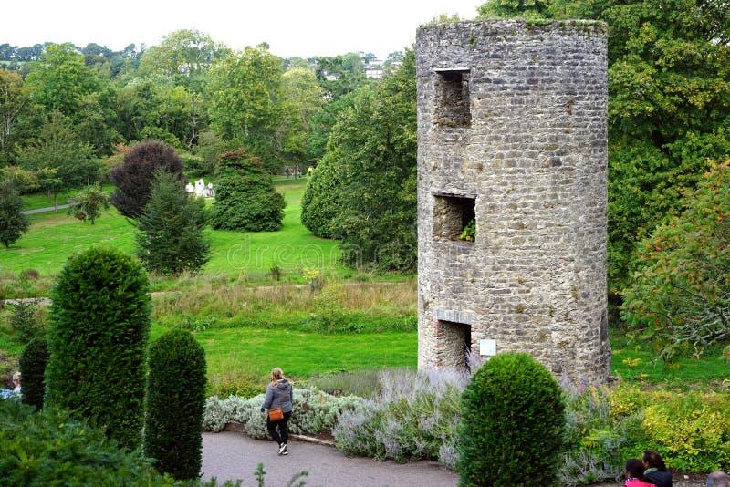 Ο πύργος φρουράς επιτηρεί τους πολύβλαστους πράσινους λόγους στοκ εικόνα