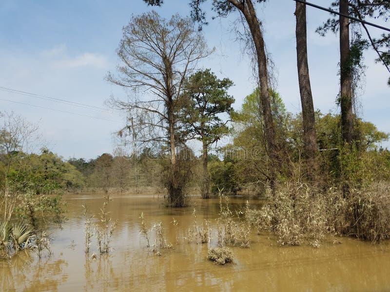 Ο πλημμυρισμένος νότος στοκ φωτογραφίες με δικαίωμα ελεύθερης χρήσης