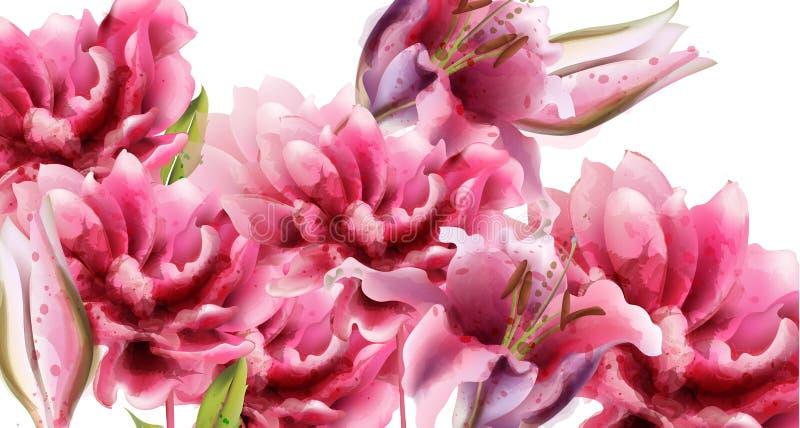 Ο ρόδινος κρίνος ανθίζει το διανυσματικό watercolor Θερινά floral υπόβαθρα ελεύθερη απεικόνιση δικαιώματος