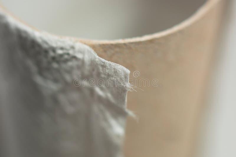 Ο ρόλος του χαρτιού τουαλέτας είναι πέρα από τη μακρο, μαλακή εστίαση στοκ φωτογραφία με δικαίωμα ελεύθερης χρήσης
