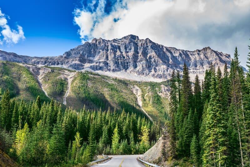 Ο δρόμος στο εθνικό πάρκο Yoho στον Καναδά στοκ εικόνα με δικαίωμα ελεύθερης χρήσης