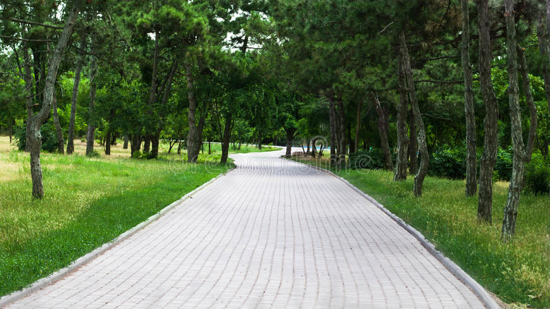 Ο δρόμος στο πάρκο στοκ εικόνα με δικαίωμα ελεύθερης χρήσης