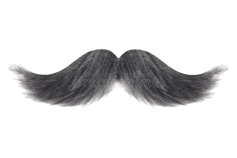 Ο σγουρός Μαύρος το γκρίζο moustache που απομονώνεται με στο λευκό στοκ εικόνες