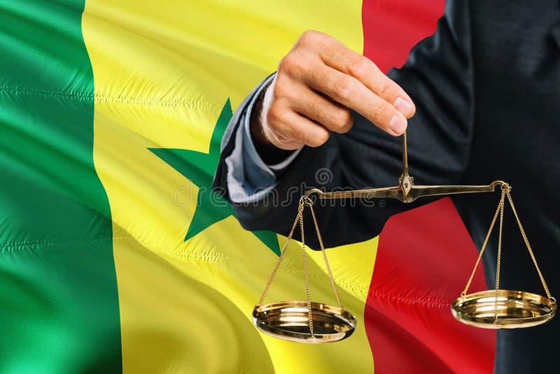 Ο σενεγαλέζικος δικαστής κρατά τις χρυσές κλίμακες της δικαιοσύνης με το κυματίζοντας υπόβαθρο σημαιών της Σενεγάλης Θέμα ισότητα στοκ εικόνες