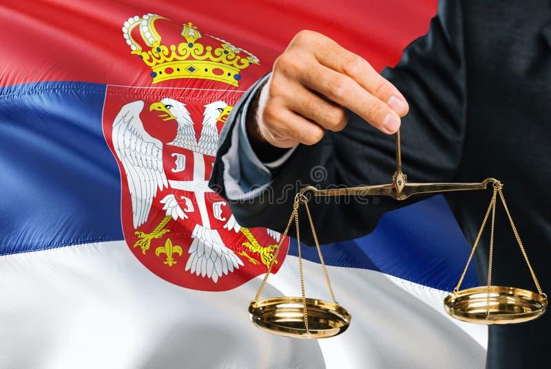 Ο σερβικός δικαστής κρατά τις χρυσές κλίμακες της δικαιοσύνης με το κυματίζοντας υπόβαθρο σημαιών της Σερβίας Θέμα ισότητας και ν στοκ εικόνα με δικαίωμα ελεύθερης χρήσης
