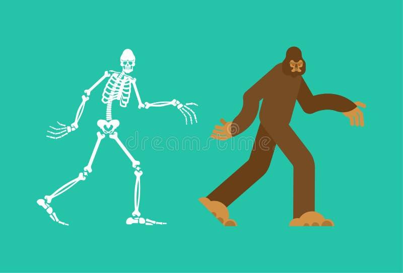 Ο σκελετός Bigfoot sasquatch κρανίο και κόκκαλα Αποτρόπαιος χιονάνθρωπος sasquatch παραμένει απεικόνιση αποθεμάτων
