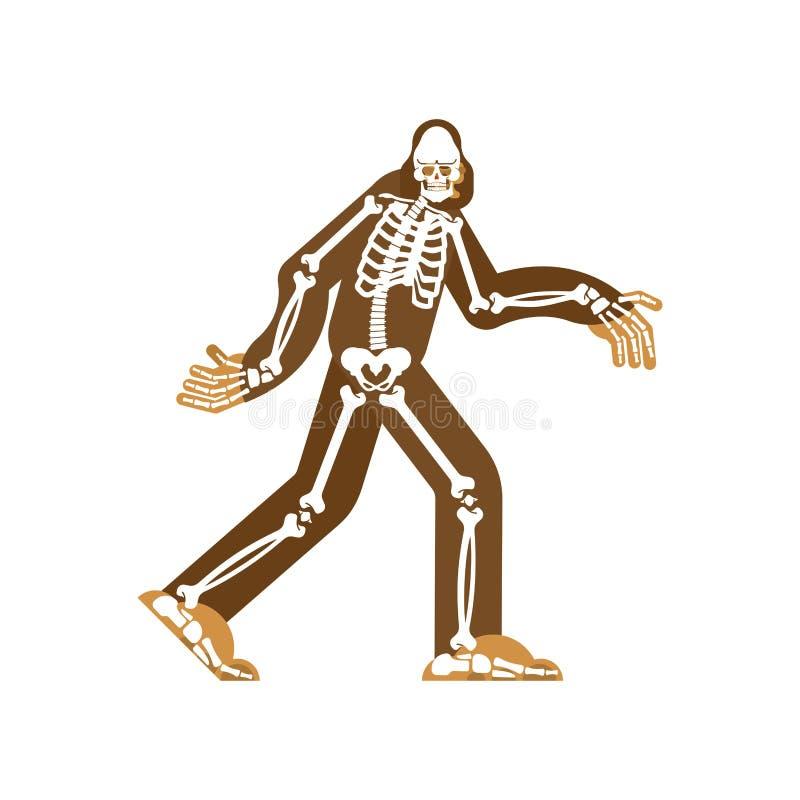 Ο σκελετός Bigfoot sasquatch κρανίο και κόκκαλα Αποτρόπαιος χιονάνθρωπος sasquatch παραμένει διανυσματική απεικόνιση