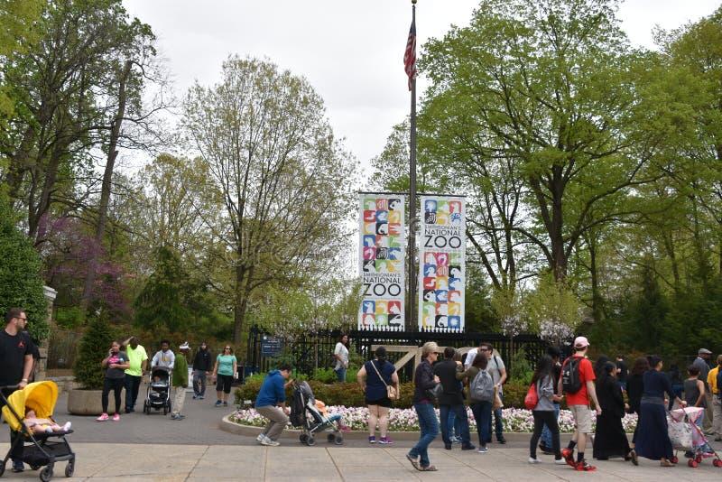 Ο σμιθσονιτικός ζωολογικός κήπος στην Ουάσιγκτον, συνεχές ρεύμα στοκ εικόνες